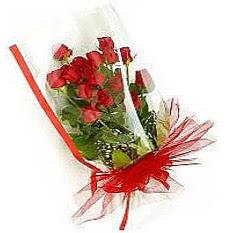 13 adet kirmizi gül buketi sevilenlere  Bitlis çiçek siparişi vermek