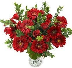 5 adet kirmizi gül 5 adet gerbera aranjmani  Bitlis hediye çiçek yolla