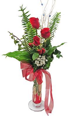 Çiçek gönderin cam vazoda 3 gül çiçekleri  Bitlis çiçek siparişi sitesi