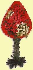 Bitlis çiçek gönderme  dügün açilis çiçekleri  Bitlis çiçek online çiçek siparişi