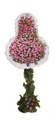 Bitlis ucuz çiçek gönder  dügün açilis çiçekleri  Bitlis internetten çiçek siparişi