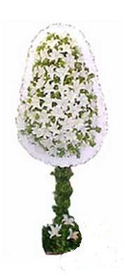 Bitlis çiçek siparişi sitesi  nikah , dügün , açilis çiçek modeli  Bitlis online çiçek gönderme sipariş