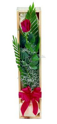 1 adet kutuda kirmizi gül  Bitlis çiçek gönderme sitemiz güvenlidir