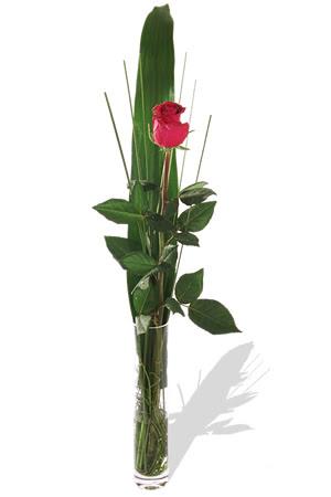 1 adet cam vazo içerisinde kirmizi gül  Bitlis çiçek , çiçekçi , çiçekçilik