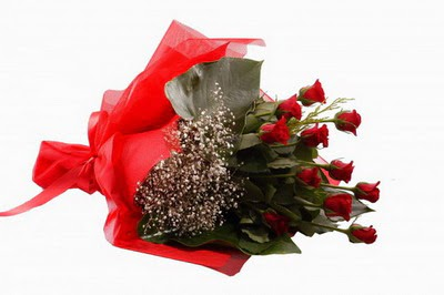 Bitlis çiçek siparişi sitesi  11 adet kirmizi gül buketi çiçekçi