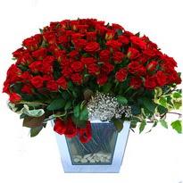 Bitlis çiçekçiler   101 adet kirmizi gül aranjmani