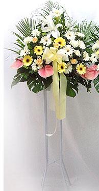 Bitlis online çiçek gönderme sipariş   perförje çiçegi dügün çiçekleri