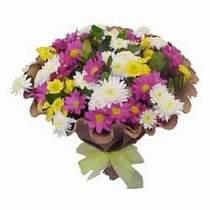 Bitlis çiçekçi telefonları  Mevsim kir çiçegi demeti