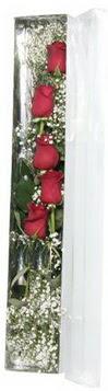 Bitlis çiçek siparişi sitesi   5 adet gülden kutu güller