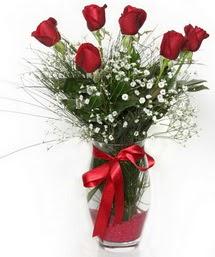 7 adet gülden cam içerisinde güller  Bitlis 14 şubat sevgililer günü çiçek