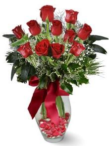 9 adet gül  Bitlis internetten çiçek satışı  kirmizi gül
