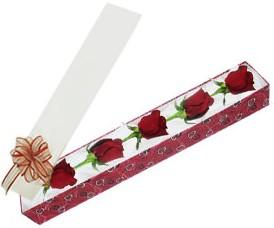 Bitlis internetten çiçek satışı  kutu içerisinde 5 adet kirmizi gül