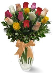15 adet vazoda renkli gül  Bitlis internetten çiçek satışı