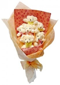 12 adet ayiciktan buket  Bitlis çiçek siparişi sitesi