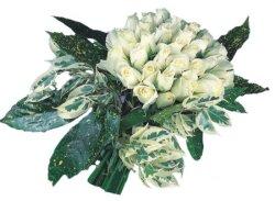 Bitlis internetten çiçek siparişi  9 Beyaz gül Özel kisiler için