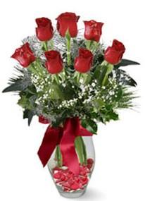 Bitlis internetten çiçek siparişi  7 adet kirmizi gül cam vazo yada mika vazoda
