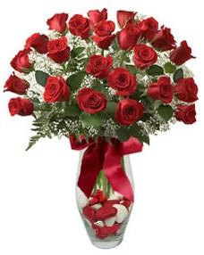 17 adet essiz kalitede kirmizi gül  Bitlis çiçek mağazası , çiçekçi adresleri