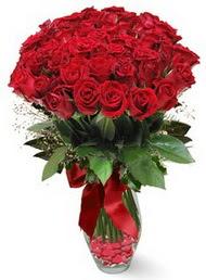 19 adet essiz kalitede kirmizi gül  Bitlis 14 şubat sevgililer günü çiçek