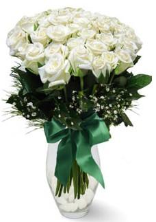 19 adet essiz kalitede beyaz gül  Bitlis çiçekçiler