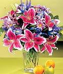 Bitlis çiçek mağazası , çiçekçi adresleri  Sevgi bahçesi Özel  bir tercih
