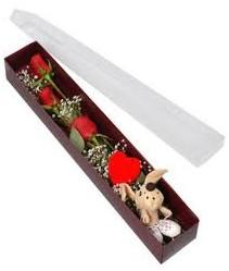 kutu içerisinde 3 adet gül ve oyuncak  Bitlis cicekciler , cicek siparisi