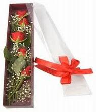 kutu içinde 5 adet kirmizi gül  Bitlis internetten çiçek siparişi