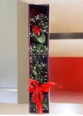 kutu içinde tek kirmizi gül  Bitlis çiçek online çiçek siparişi