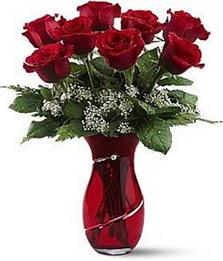 Vazo içinde 8 adet kirmizilar içinde güller  Bitlis internetten çiçek siparişi