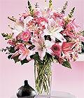 Bitlis çiçek yolla , çiçek gönder , çiçekçi   Kazablanka biçme vazoda