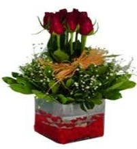 Bitlis çiçek gönderme  7 adet mika yada cam vazoda gül tanzimi