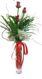 Bitlis çiçek siparişi sitesi  3 adet kirmizi gül vazo içerisinde