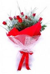Bitlis İnternetten çiçek siparişi  9 adet kirmizi gül buketi demeti