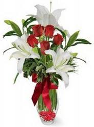 Bitlis çiçek siparişi vermek  5 adet kirmizi gül ve 3 kandil kazablanka