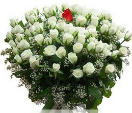 Bitlis internetten çiçek satışı  100 adet beyaz 1 adet kirmizi gül buketi