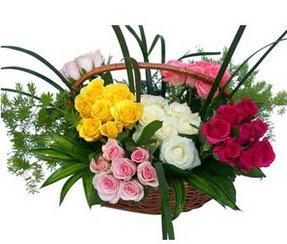 Bitlis ucuz çiçek gönder  35 adet rengarenk güllerden sepet tanzimi