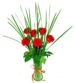 Bitlis çiçek , çiçekçi , çiçekçilik  6 adet kırmızı güllerden vazo çiçeği