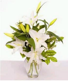 Bitlis çiçek gönderme  2 dal cazablanca vazo çiçeği