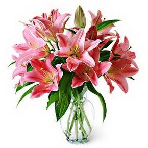 3 dal kazablanka görsel vazosu  Bitlis internetten çiçek siparişi