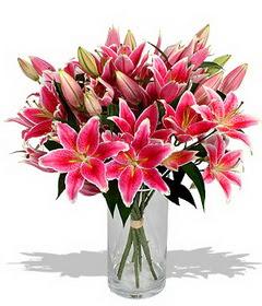 4 dal cazablanca görsel vazosu  Bitlis çiçekçi mağazası