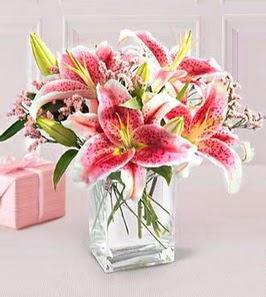 2 dal kazablanka görsel vazosu  Bitlis çiçek siparişi sitesi