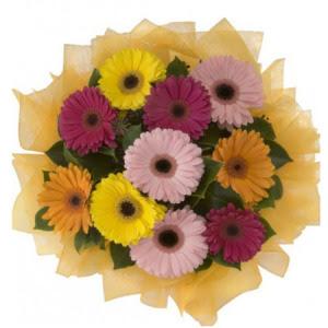 Bitlis İnternetten çiçek siparişi  11 adet karışık gerbera çiçeği buketi