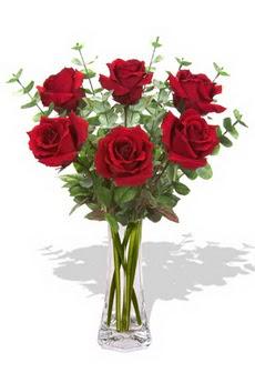 Bitlis çiçekçi mağazası  6 kırmızı gül vazosu