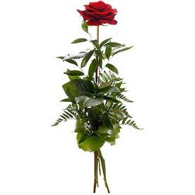 Bitlis online çiçekçi , çiçek siparişi  1 adet kırmızı gülden buket