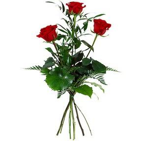 Bitlis uluslararası çiçek gönderme  3 adet kırmızı gülden buket