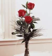 Bitlis internetten çiçek satışı  Vazoda 3 adet güzel gül