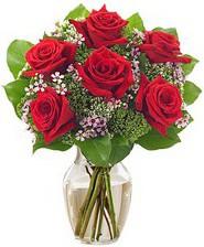 Kız arkadaşıma hediye 6 kırmızı gül  Bitlis internetten çiçek siparişi