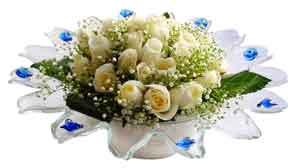 Bitlis çiçek online çiçek siparişi  11 adet Beyaz güller özel cam tanzim
