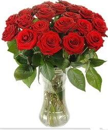 Bitlis çiçek mağazası , çiçekçi adresleri  Vazoda 15 adet kırmızı gül tanzimi