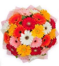 15 adet renkli gerbera buketi  Bitlis yurtiçi ve yurtdışı çiçek siparişi