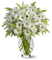 Vazo içerisinde beyaz krizantem çiçekleri  Bitlis çiçekçi mağazası